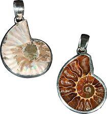 Silberanhänger Kettenanhänger Ammoniten Anhänger Fossilien Fossilienschmuck