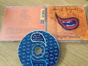 Cd album - David Kilgour – Sugar Mouth