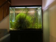 60 Galon Aquarium complete with black stand and finnex planted plus light