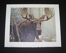 "Robert Bateman Limited Edition Signed Print ""Bull Moose""  w/Original Folder"
