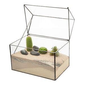 Glass Box House Shaped Succulent Terrarium Tabletop Moss Plant Display Planter