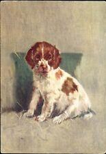 Welsh Springer Spaniel puppy dog~De Reszke Cigarette advertising postcard~emb.