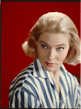 MAY BRITT 1958 Vintage Color 8x10 Portrait Photo TRANSPARENCY Swedish Bombshell
