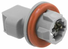 License Lamp Socket Front Right AIRTEX 1P1496