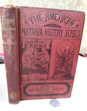FERNS; In Their HOMES & OURS,1878,John Robinson,1st Ed,Illust