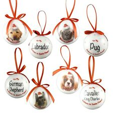 Christmas Pet Bauble Xmas Decoration - 5 inches/2cm - Plastic