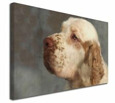 More details for clumber spaniel dog x-large 30