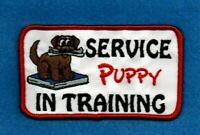 SERVICE PUPPY - IN TRAINING - service dog vest patch