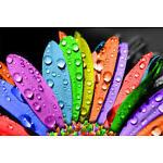Il bazar dei 1000 colori