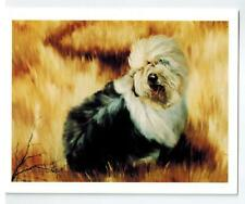 Old English Sheepdog In Field Notecard 6 Note Cards 6 Envelopes Ruth Maystead