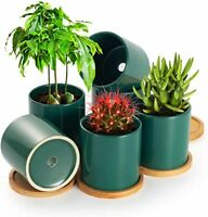 Succulent Plant Pots Ceramic Flower Pot Indoor with Drainage Hole & Bamboo tray