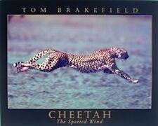 Cheetah Running Big Cat Wild Animal Wall Decor Art Print Poster (16x20)