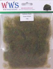 WWS Herbst 10mm Statische Gras 20g Paket Modelle, Eisenbahnen, Dioramen