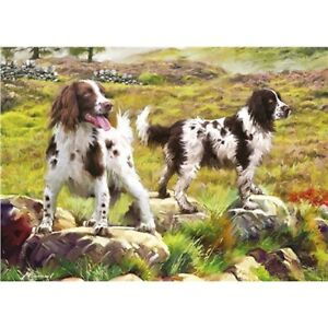 NEW 1000 piece Jigsaw Puzzle SPRINGER SPANIEL Dog Lover Countryside Gift