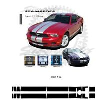 Ford Mustang 2010-2012 Ralley Stripes Graphic Kit - Gloss Black