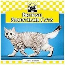 British Shorthair Cats (Cats Set 6)-ExLibrary