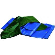 Lona alquitranada Antidesgarro Standard Bicolor Azul/Verde 6X8 M