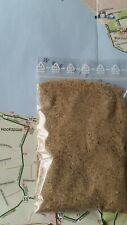 feiner Sand aus Hoofdplaat. Westerscheldemündung, NL, Seeland, Nordsee