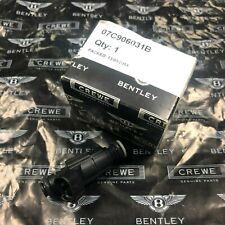 Bentley CREWE GENUINE Fuel Injector #07C906031B NEW