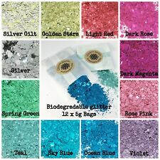 12 x 5g Bags Biodegradable Chunky Bio Glitter mix Festival Party Makeup Skin eco