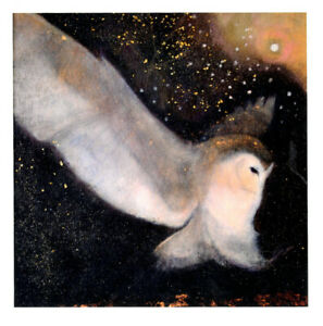 PAGAN WICCAN GREETING CARDS Night Descending CELTIC OWL Goddess CATHERINE HYDE