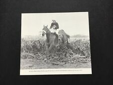 RED RUM  photo 1973 GRAND NATIONAL Horse Racing