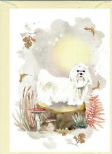 "Maltese Dog (4""x 6"") Blank Card ideal for any occasion - by Starprint"
