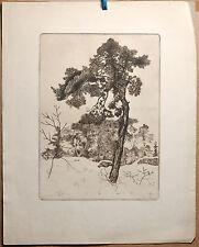 fine Northern Modernist 1916 Jugendstil pencil signed antique print WINTER pine