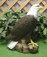 Medium American Bald Golden Eagle Latex Fiberglass Production Mold Concrete