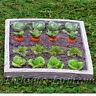New Vivid Arts Miniature World Plus Size - Fairy Vegetable Garden-Model Village