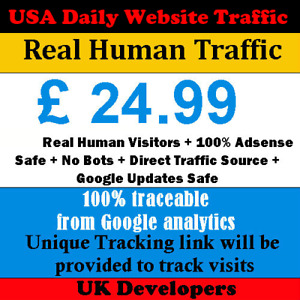 Real Human Visitor USA Website Traffic - Daily Visitors -  Direct Traffic