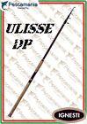 Canne à Pêche Ignesti Ulisse Dp Carbone Tressé Pêche à la Carpe Télescopique