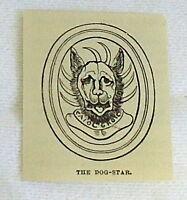 1882 small magazine engraving ~ DOG-STAR Egypt