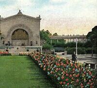 Vintage RPPC Post Card, Balboa Park, San Diego, California   Z-2-3