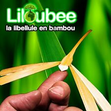 100 Libellules 12x10 Loisirs Créatifs Projet Educatif Ecole Enfant
