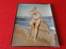Vintage Adult Woman Pinup Ansco Photo