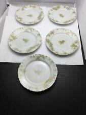 Vintage Haviland Limoges  Plate set of 5