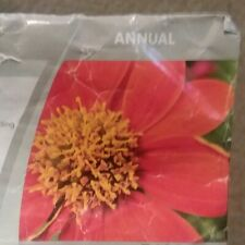 Mexican Sunflower Red Flower Seeds