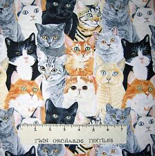 Pet Fabric - Beige Gray Black Packed Cats C3883 - Timeless Treasures YARD