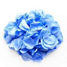 Blue natural biodegradable rose petals for wedding confetti / decoration