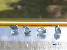 Lots of Australian Natural Sapphire Rough Blue--155ct