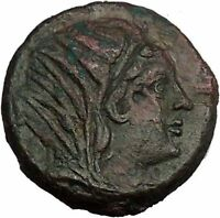 PETELIA in BRUTTIUM 280BC Demeter Zeus Authentic Ancient Greek Coin i52687