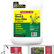 Compare-N-Save 016869 Concentrate Grass and Weed Killer, 41-Percent Glyphosat...