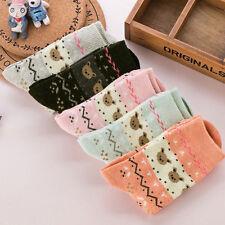 5 Pairs Winter Warm Women's Sweet Cartoon Cute Bear Long Soft Wool Blend  Gift