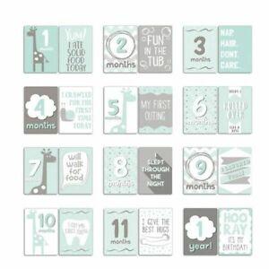 PEANUT SHELL UPTOWN GIRAFFE MILESTONE MEMORY CARDS BRAND NEW