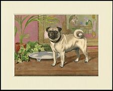 PUG CHARMING LITTLE DOG PRINT MOUNTED READY TO FRAME