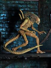 Exclusive Aliens SDCC Sewer Mutation Warrior Alien Loose Aucion Figure