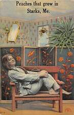 """Starks Maine """"Peaches That Grown In.."""" Woman Posing On Bench Antique PC V16098"""