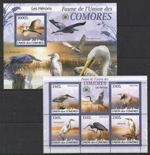 Comoros 2009 MNH MS+SS, water Birds of  family Ardeidae, Heron (P9n)