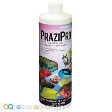 Hikari Aquarium Solutions  Prazipro 16 oz
